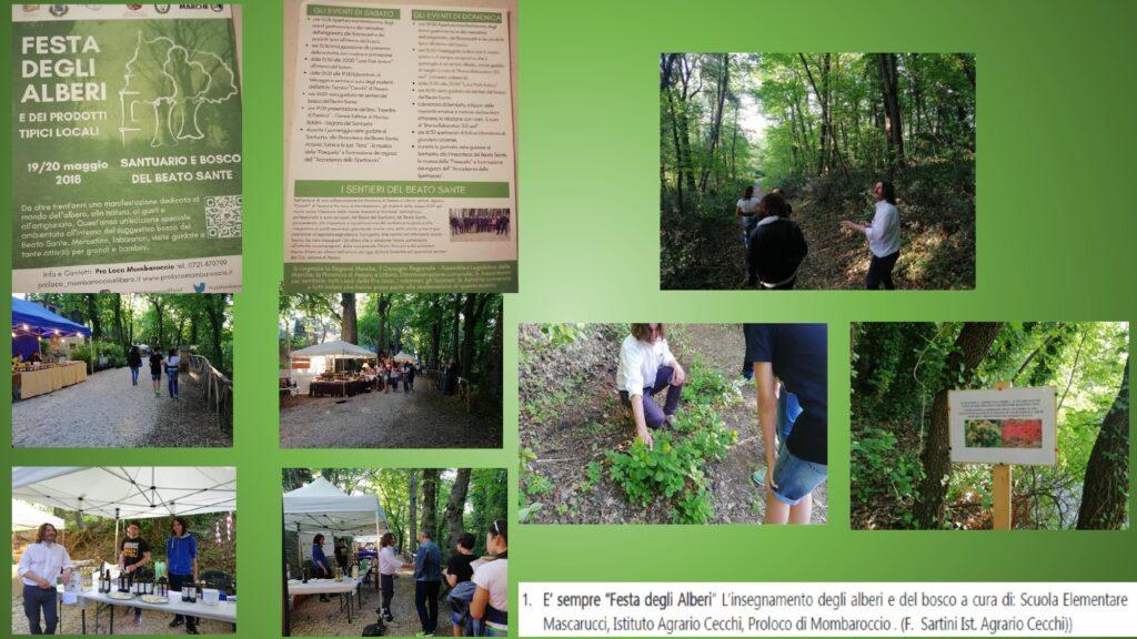 Presentazione Forum 30 marzo Cecchi_page-0004