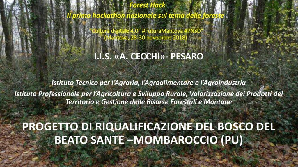 Presentazione Forum 30 marzo Cecchi_page-0005