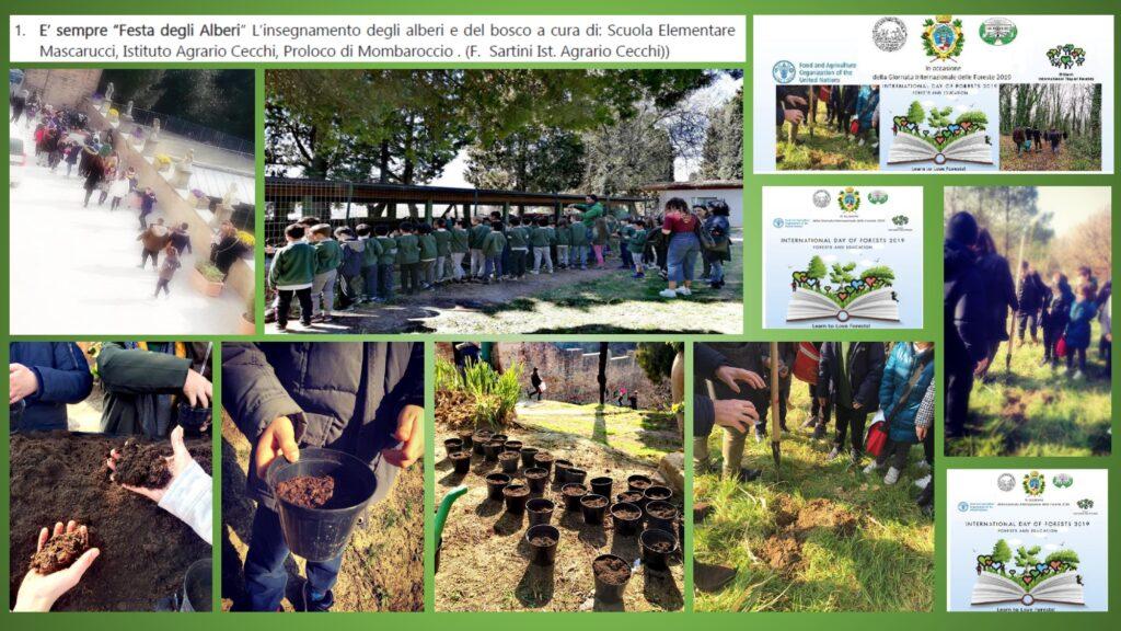 Presentazione Forum 30 marzo Cecchi_page-0009